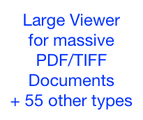 Large Viewer
